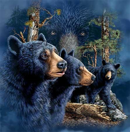 Скрытые образы  - Головоломка от Стивена Гарднера - Отыщите всех животных и их образы
